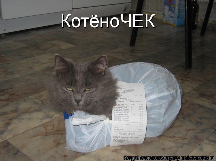 Котоматрица: КотёноЧЕК
