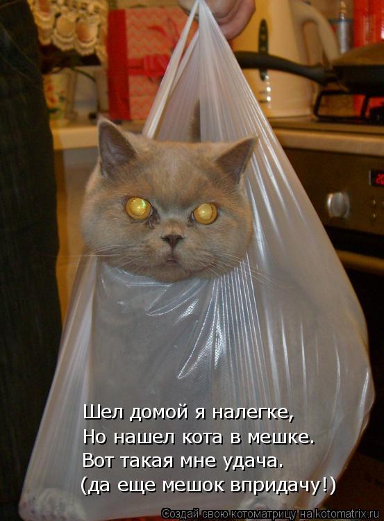 Котоматрица: Шел домой я налегке, Но нашел кота в мешке. (да еще мешок впридачу!) Вот такая мне удача.
