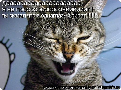 Котоматрица: дааааааааааааааааааааа) я не поооооооооооониииииил! ты сказал что я однаглазый пират!!!!!!!