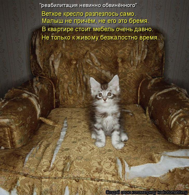 """Котоматрица: """"реабилитация невинно обвинённого""""  Ветхое кресло разлезлось само. Малыш не причём, не его это бремя. В квартире стоит мебель очень давно. Не"""