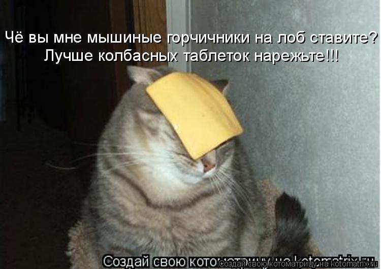 Котоматрица - Чё вы мне мышиные горчичники на лоб ставите? Лучше колбасных таблеток