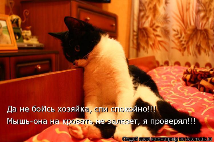 Котоматрица - Да не боИсь хозяйка, спи спокойно!!! Мышь-она на кровать не залезет, я