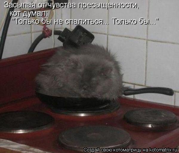 """Котоматрица: Засыпая от чувства пресыщенности, кот думал:  """"Только бы не спалиться... Только бы..."""""""