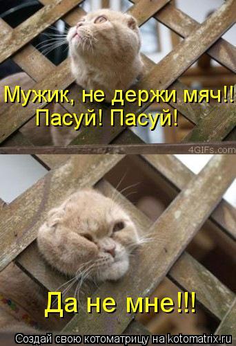 http://kotomatrix.ru/images/lolz/2011/06/22/936099.jpg