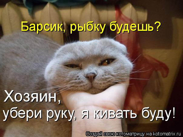 Котоматрица - Барсик, рыбку будешь? Хозяин,  убери руку, я кивать буду!