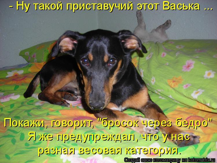 http://kotomatrix.ru/images/lolz/2011/06/23/936474.jpg