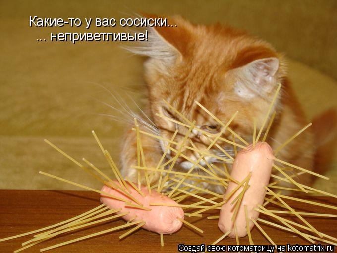Котоматрица - Какие-то у вас сосиски... ... неприветливые!