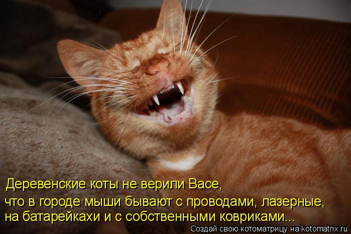 Котоматрица: что в городе мыши бывают с проводами, лазерные, на батарейкахи и с собственными ковриками... Деревенские коты не верили Васе,