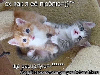 Котоматрица: ох как я её люблю=))** ща расцелую=-******