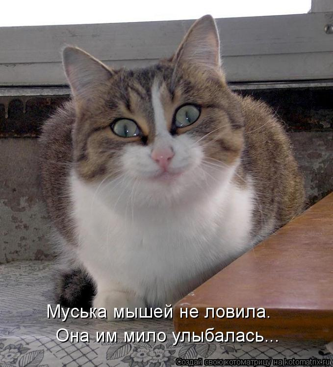 Котоматрица: Муська мышей не ловила. Она им мило улыбалась...
