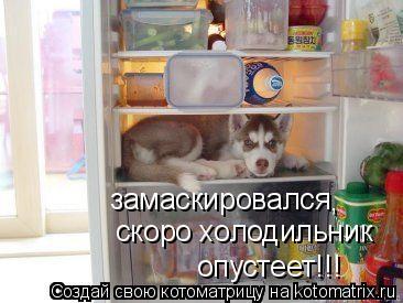 Котоматрица: замаскировался , скоро холодильник  опустеет!!!