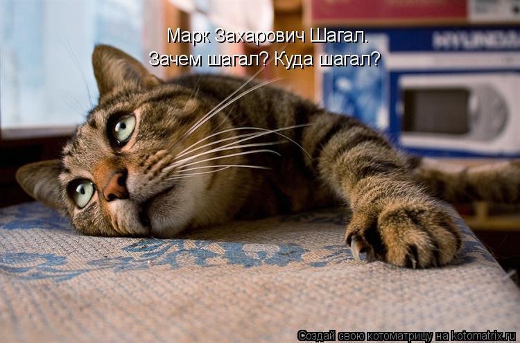 Котоматрица: Марк Захарович Шагал. Зачем шагал? Куда шагал?
