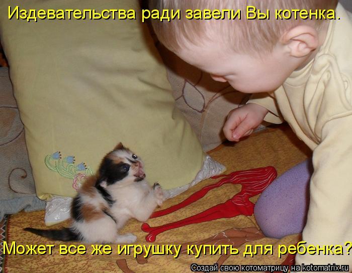 Котоматрица: Издевательства ради завели Вы котенка.  Может все же игрушку купить для ребенка?