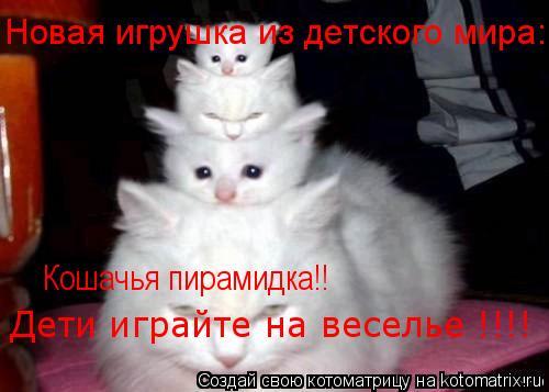 Котоматрица: Новая игрушка из детского мира: Кошачья пирамидка!! Дети играйте на веселье !!!!