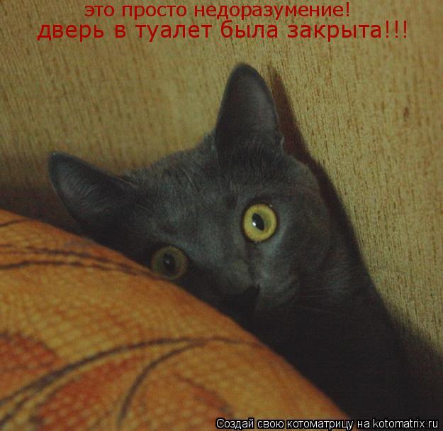 Котоматрица: это просто недоразумение! дверь в туалет была закрыта!!!