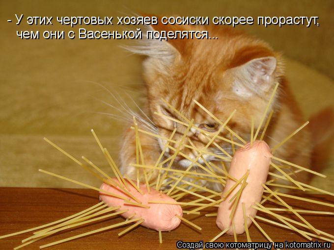 Котоматрица: - У этих чертовых хозяев сосиски скорее прорастут,   чем они с Васенькой поделятся...