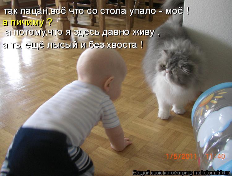 http://kotomatrix.ru/images/lolz/2011/06/28/940075.jpg