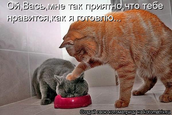 Котоматрица: Ой,Вась,мне так приятно,что тебе нравится,как я готовлю...