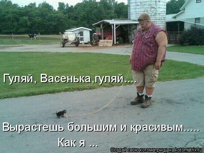 Котоматрица - Вырастешь большим и красивым..... Гуляй, Васенька,гуляй.... Как я ...
