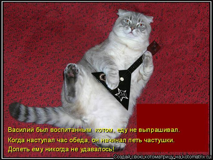 Котоматрица: Василий был воспитанным  котом, еду не выпрашивал. Когда наступал час обеда, он начинал петь частушки. Допеть ему никогда не удавалось!