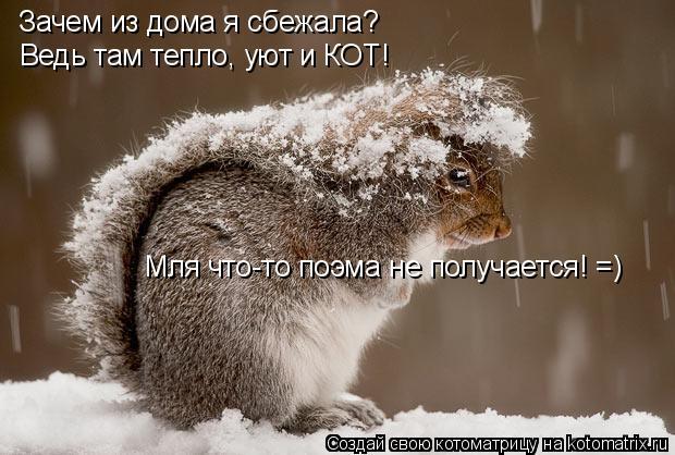 Котоматрица: Зачем из дома я сбежала? Ведь там тепло, уют и КОТ! Мля что-то поэма не получается! =)