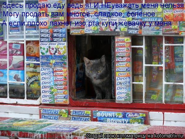 Котоматрица: Здесь продаю еду ведь я! И НЕуважать меня нельзя Могу продать вам многое, сладкое, соленое А если плохо пахнет изо рта купи жевачку у меня