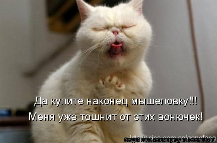 Котоматрица: Да купите наконец мышеловку!!! Меня уже тошнит от этих вонючек!