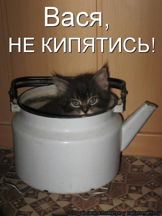 Котоматрица - Вася,  НЕ КИПЯТИСЬ!