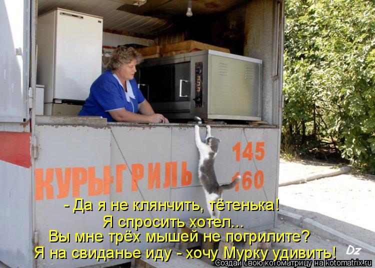 Котоматрица: - Да я не клянчить, тётенька! Я спросить хотел... Вы мне трёх мышей не погрилите? Я на свиданье иду - хочу Мурку удивить!