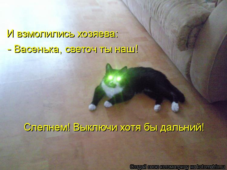Котоматрица: И взмолились хозяева: - Васенька, светоч ты наш! Слепнем! Выключи хотя бы дальний!
