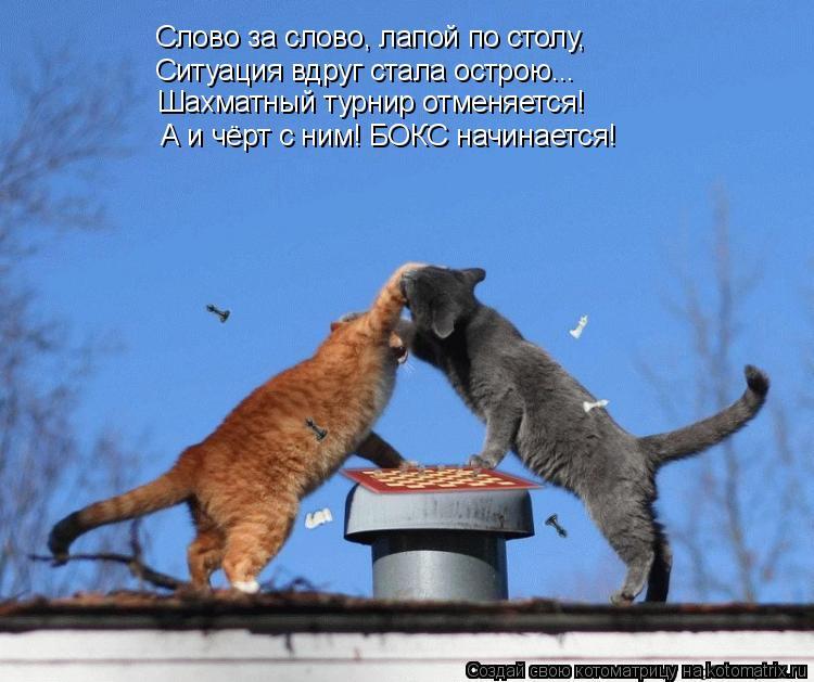 http://kotomatrix.ru/images/lolz/2011/07/01/942160.jpg