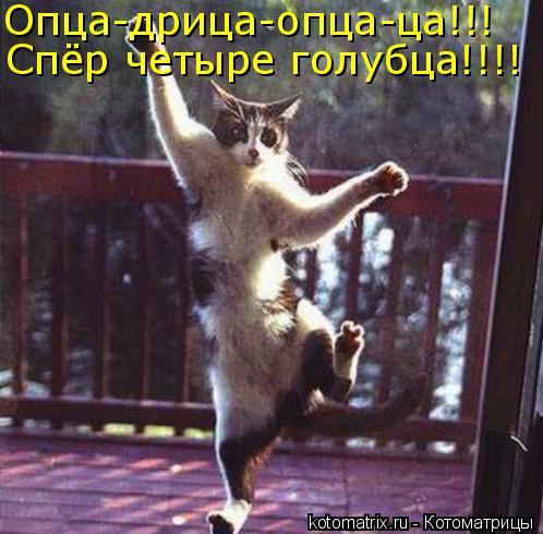 Котоматрица - Опца-дрица-опца-ца!!! Спёр четыре голубца!!!!