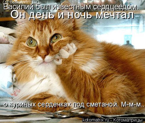Котоматрица: Василий был известным сердцеедом.  Он день и ночь мечтал  о куриных сердечках под сметаной. М-м-м...