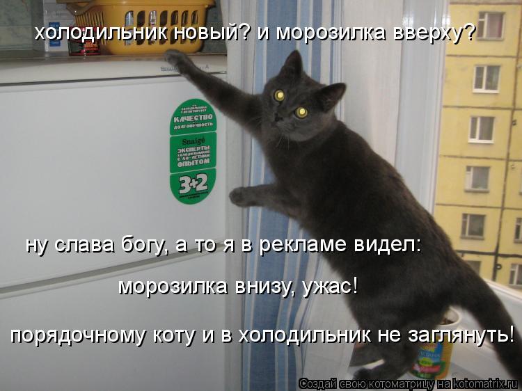 Котоматрица: холодильник новый? и морозилка вверху? ну слава богу, а то я в рекламе видел: морозилка внизу, ужас! порядочному коту и в холодильник не загля