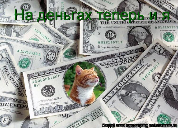 Котоматрица: На деньгах теперь и я