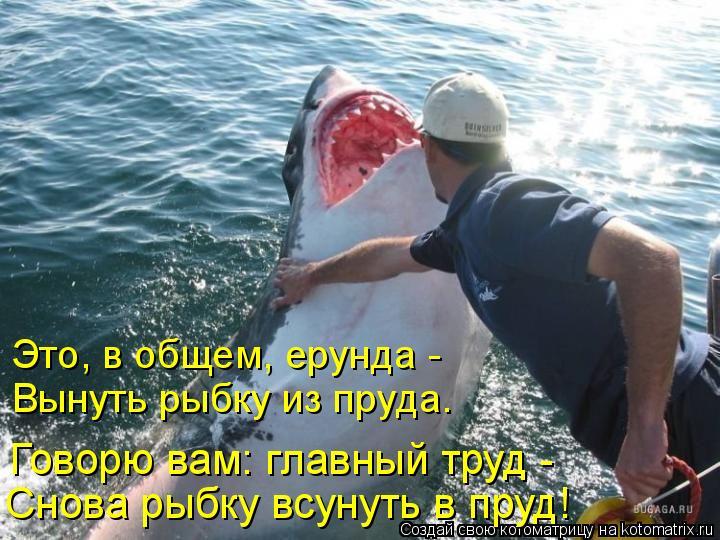 Котоматрица: Это, в общем, ерунда - Вынуть рыбку из пруда. Говорю вам: главный труд - Снова рыбку всунуть в пруд!