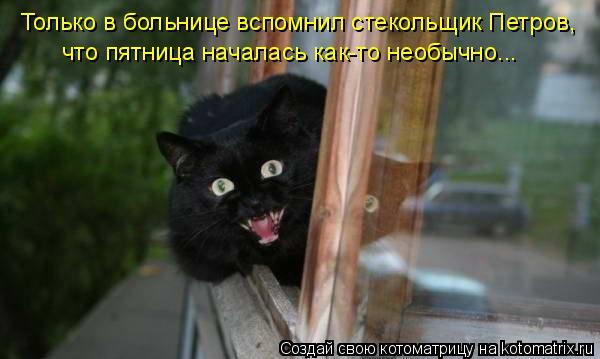 Котоматрица: что пятница началась как-то необычно... Только в больнице вспомнил стекольщик Петров,