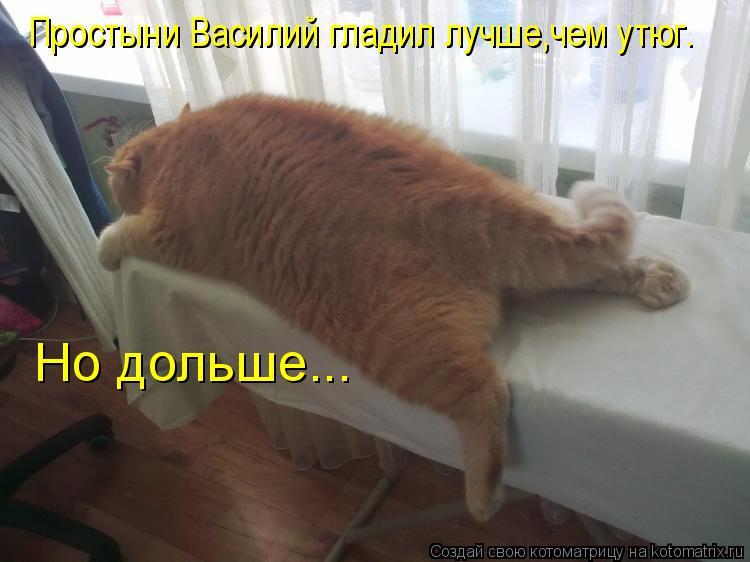Котоматрица: Простыни Василий гладил лучше,чем утюг. Но дольше...