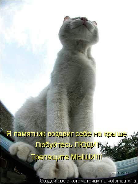 Котоматрица: Я памятник воздвиг себе на крыше. Любуйтесь ЛЮДИ! Трепещите МЫШИ!!!