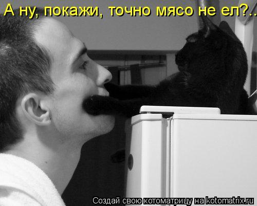 Котоматриця!)))) - Страница 7 945099