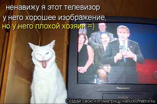 Котоматрица: ненавижу я этот телевизор у него хорошее изображение, но у него плохой хозяин =)