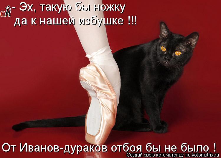 Котоматрица: - Эх, такую бы ножку  да к нашей избушке !!! От Иванов-дураков отбоя бы не было !