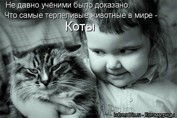 Котоматрица: Не давно учёними было доказано, Что самые терпеливые животные в мире - Коты