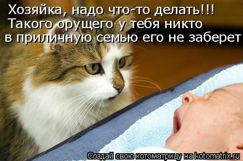 Котоматрица - Хозяйка, надо что-то делать!!! Такого орущего у тебя никто в приличную
