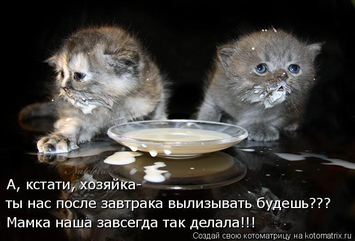 Котоматрица - Мамка наша завсегда так делала!!! ты нас после завтрака вылизывать буд