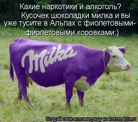 Котоматрица: Какие наркотики и алкоголь?  Кусочек шоколадки милка и  фиолетовыми коровками:)  уже тусите в Альпах с фиолетовыми- вы