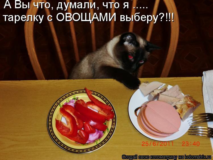 Котоматрица - А Вы что, думали, что я ..... тарелку с ОВОЩАМИ выберу?!!!