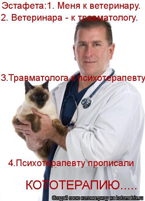 Котоматрица: Эстафета:1. Меня к ветеринару. 2. Ветеринара - к травматологу. 3.Травматолога к психотерапевту. 4.Психотерапевту прописали  КОТОТЕРАПИЮ.....