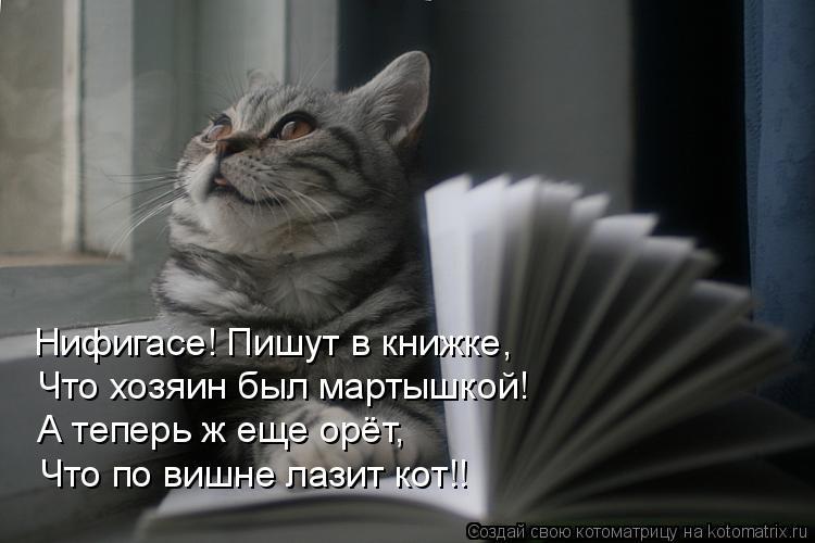 Котоматрица: Нифигасе! Пишут в книжке,  Что хозяин был мартышкой! А теперь ж еще орёт, Что по вишне лазит кот!!