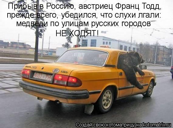 Котоматрица: Прибыв в Россию, австриец Франц Тодд,  прежде всего, убедился, что слухи лгали: медведи по улицам русских городов НЕ ХОДЯТ!